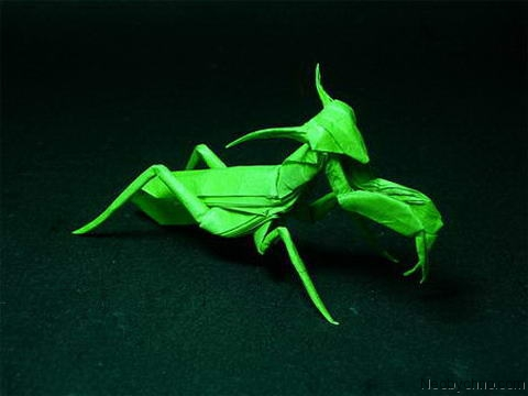Оригами саранча