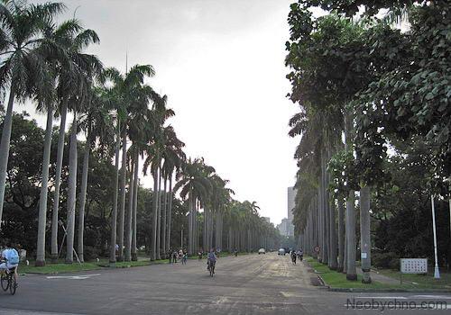 Сан Чи фото