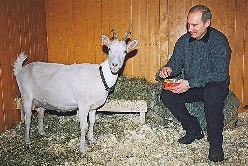 Подарок на Новый год для Путина