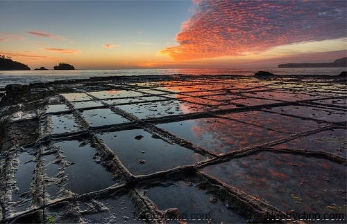 Мозаичная мостовая, Тасмания (Австралия) 03-tesselated-pavement