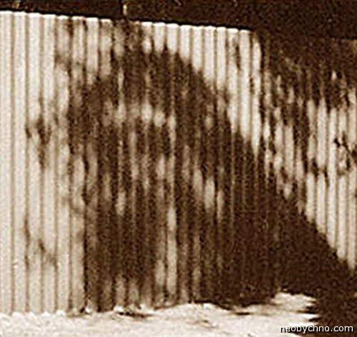 Тень Иисуса на заборе