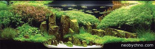 Японский аквариум от Амано