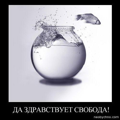 Какие социальные сети любят в России (ТОП-20)