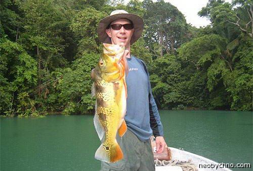рыбалка гатун панама