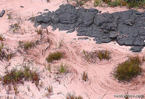 Розовый песок затерянного мира