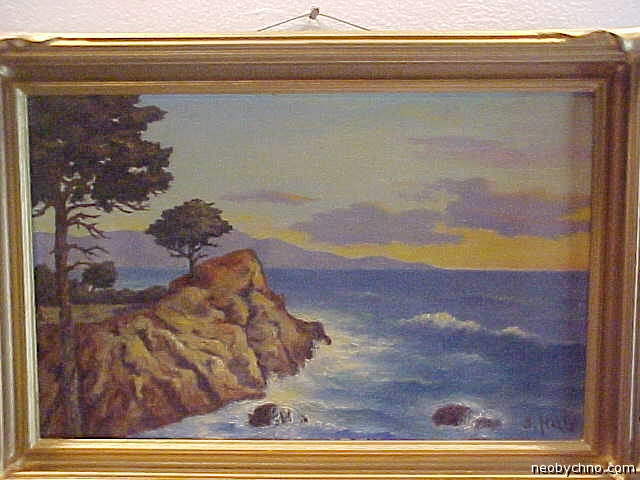 Кипарис с полуострова Монтерей - символ Калифорнии