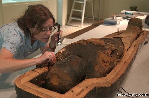 Изучая мумию