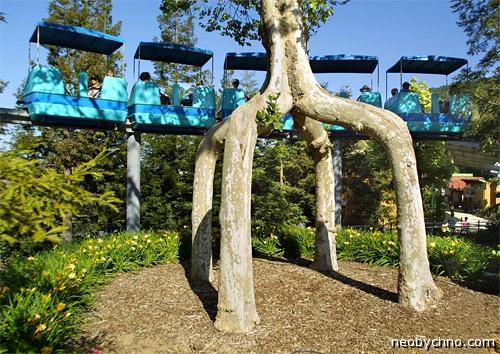 Аттракцион фантастических деревьев