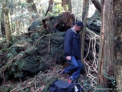 Страшное место - лес у подножия Фудзиямы