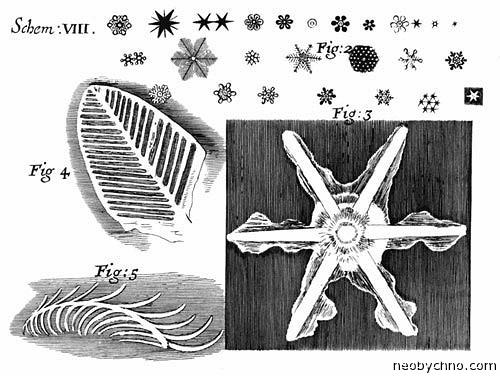 Снежинки под мироскопом