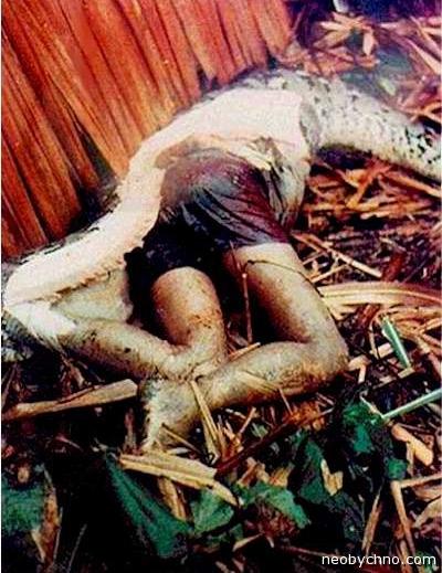Человек, которого проглотила змея