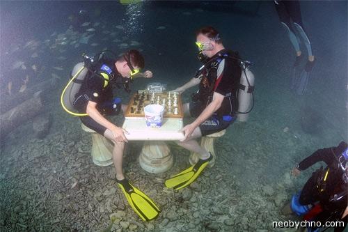 подводные шахматы олимпийский вид спорта