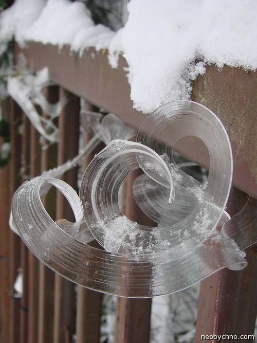 Не замерзающая зимой