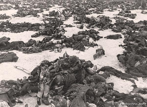 Сталинград одним снимком