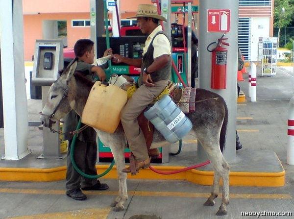 Заправка текиловым биотопливом