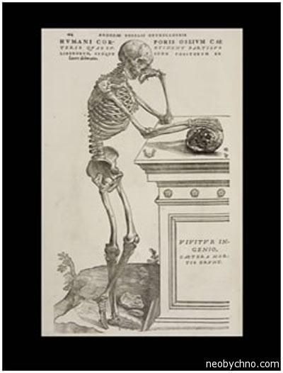 Стоял скелет задумчивый