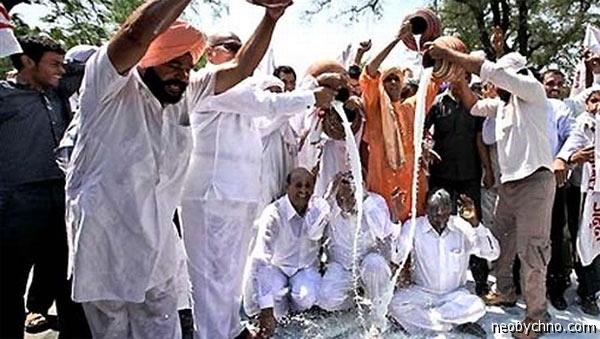 Протест молочников в Индии