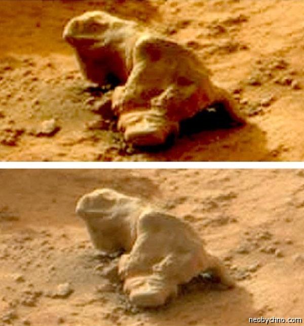 Игуана на Марсе