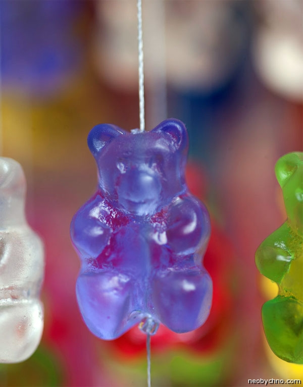 Медведь излучающий свет