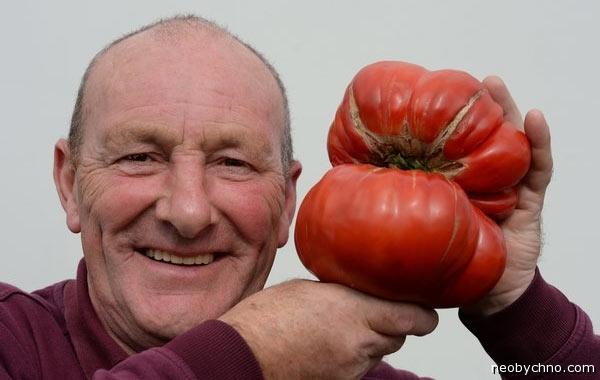 Джо Этертон и томатный монстр