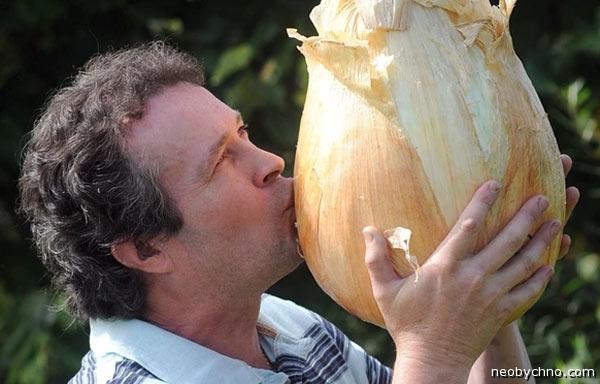 Как правильно целоваться с овощами