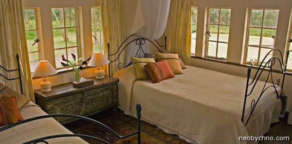 Комната в жирафьем отеле