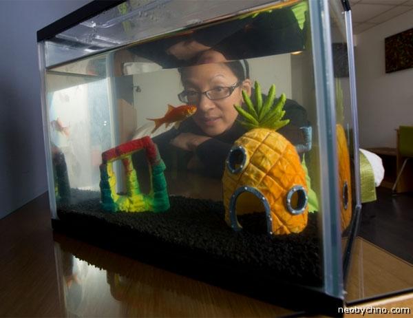 Золотая рыбка в аренду