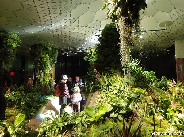 Подземный оазис в Нью-Йорке