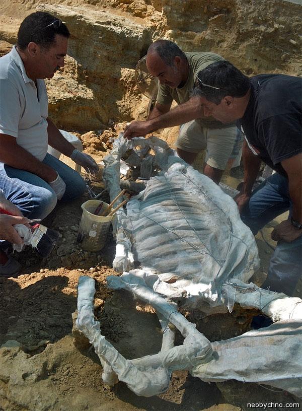 Могила лошади из древней Греции