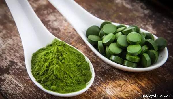 16-algae-dinner