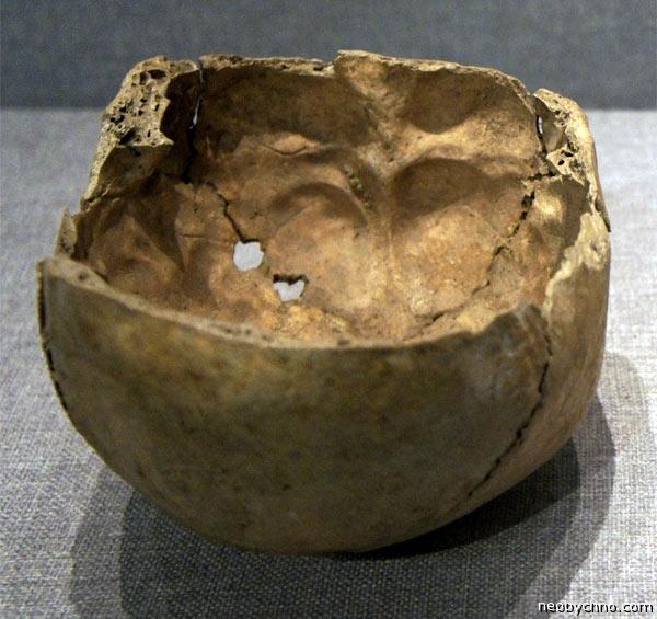 07-skull-cups