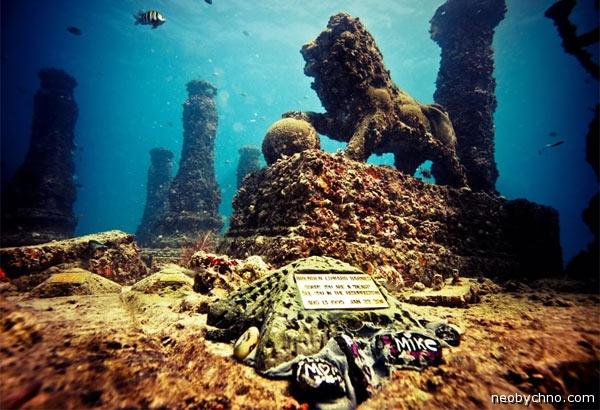 подводное кладбище флорида