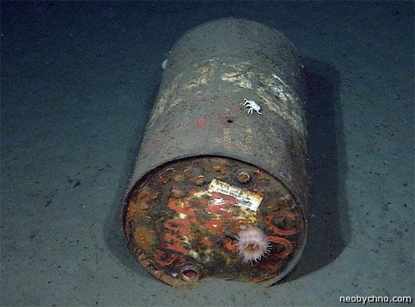 отходы в океане на дне