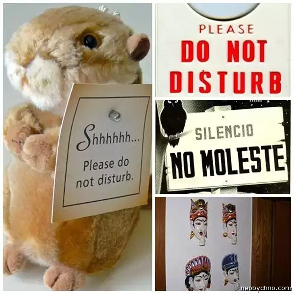 14-do-not-disturb